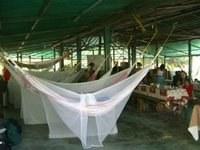 The Bernal Tours Campsite