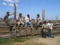 Real Vaqueros, All Of Them!